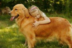 母狗发情期有什么表现?